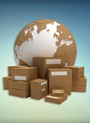 Capabilities: Inventory Management-Distribution